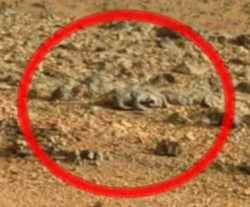 Загадочные объекты на Марсе