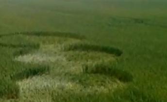 НЛО фото в Украине