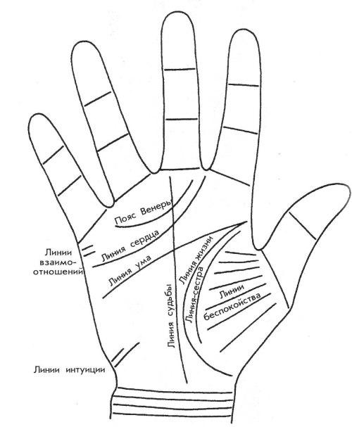 Линии руки для хиромантии