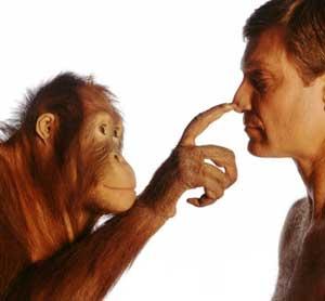 Современные эволюционные процессы в человеке