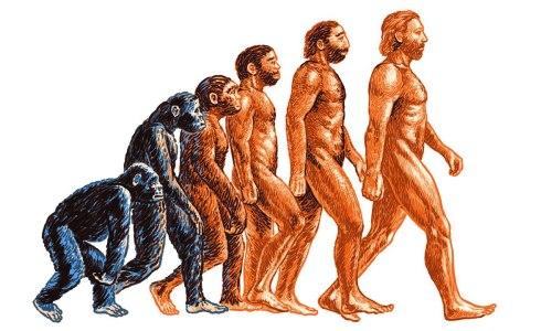 Эволюционная теория появления человека