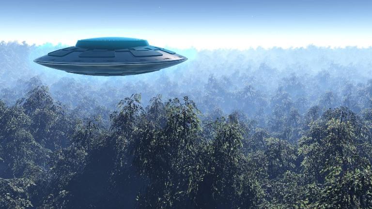 Летающая тарелка над лесом
